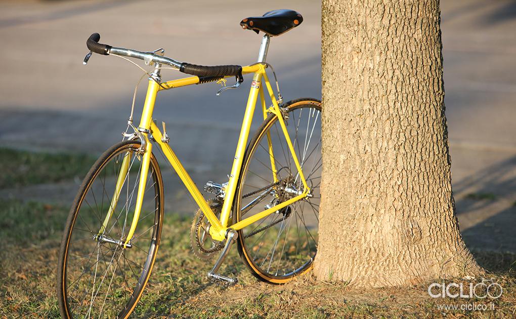Cinelli, Campagnolo Chorus, 3ttt, NISI HR22, Brooks Professional saddle, Barelli Supreme pedals