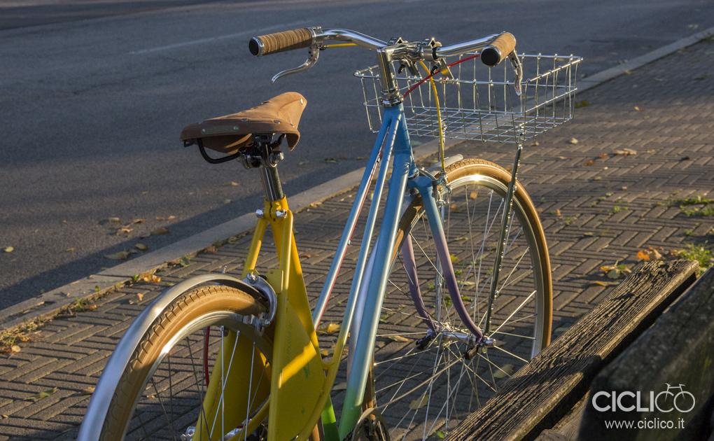 Alessio-B, bici da città, hirondelle, ciclico, urban bikes, Wald, Curana, Brooks B17 Aged, Campagnolo C-Record